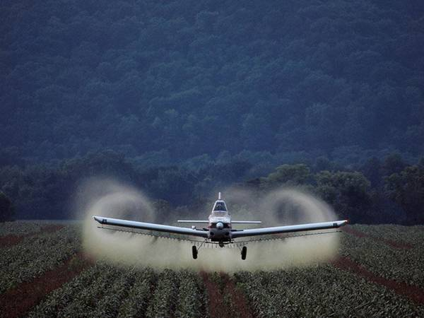 На каком расстоянии от населенного пункта разрешена обработка полей гербицидами с помощью наземных установок?
